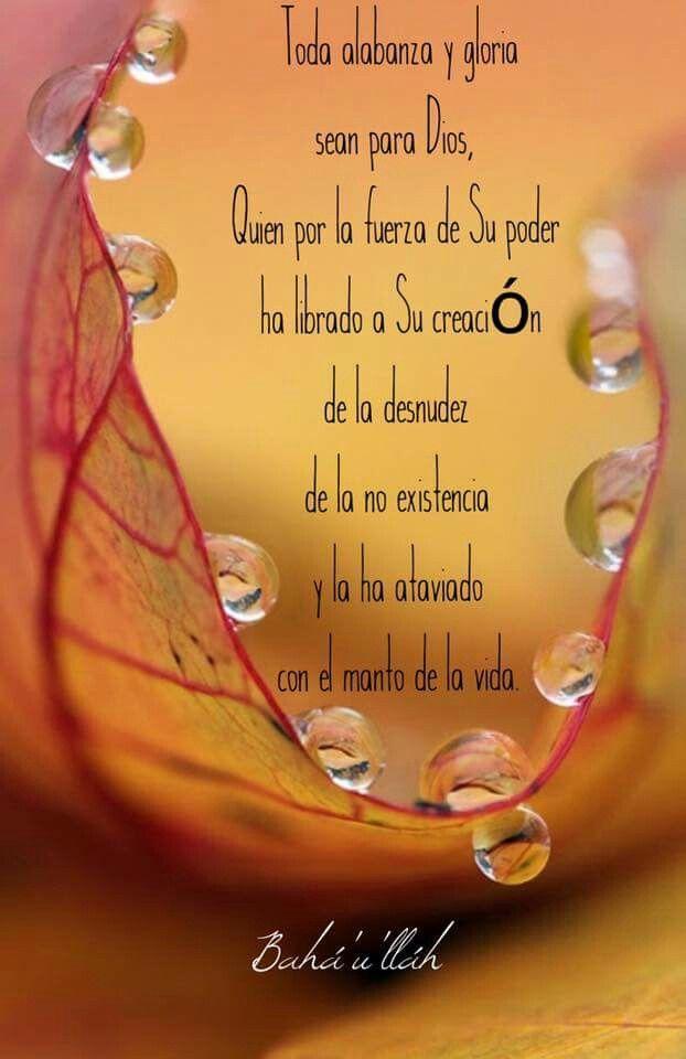Classroom Prayer Ideas ~ Best images about vitaminas para el alma on pinterest