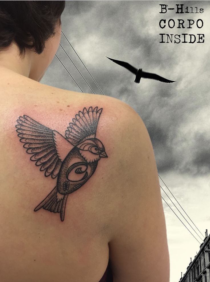 DOTWORK BIRD #bhillstattoocompany #laratoniolotattooartist #tattoo #dotworktattoo #ink #laraladyoktopustattooartist #bhillstattoo #cittadella #tattoocittadella #tatuatoriveneto #dotwork #tattooartist #birdtattoo