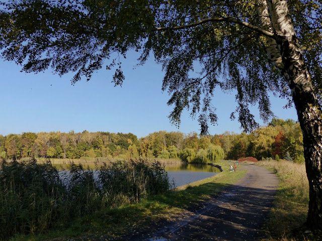szlaki i bezdroża: Osiedle Młodego Górnika - ostoja ciszy i spokoju