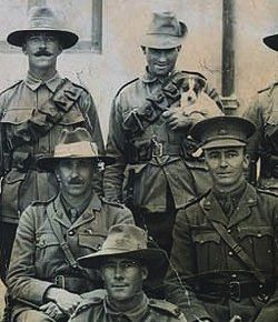 Men of the 2nd Australian Light Horse Brigade, December 1915
