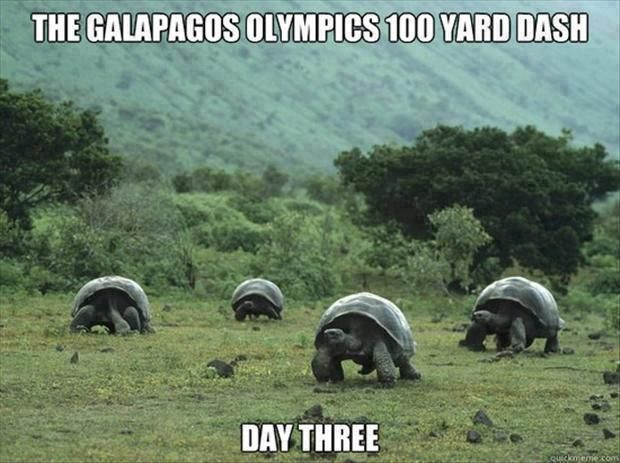 Thats how they do it on Galapagos