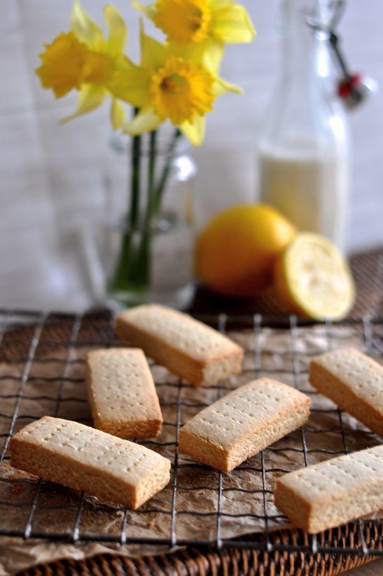 Lemon Shortbread (grain/dairy/egg/refined sugar free) // thefoodieteen.com
