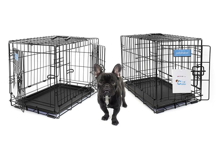 Petphabet THE BEST Single-Door or Double-Door Collapsible Pet Dog Crate with Divider Panel and Plastic Pan, 7 Sizes Available for Petite to Extra Large Dogs ** Trust me, this is great! Click the image. : Dog cages