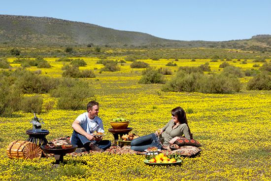 Bushmans Kloof Wilderness Reserve and Wellness Retreat, nestled at the foothills of the Cederberg Mountains, is a sanctuary for wellbeing, relaxation and, you guessed it, romance. http://blog.suretravel.co.za/2013/02/romantic-destinations-in-south-africa.html
