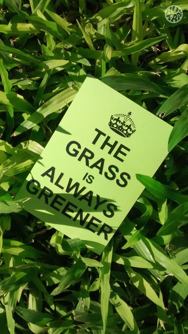 The grass is always greener! Venta por menor y mayor. f/hurratallercreativo // holahurra@gmail.com