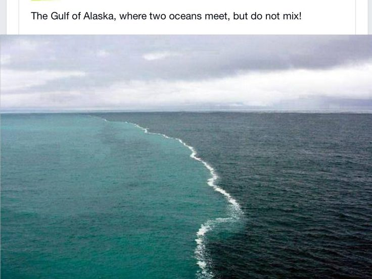 two oceans meet but do not mix location appartement