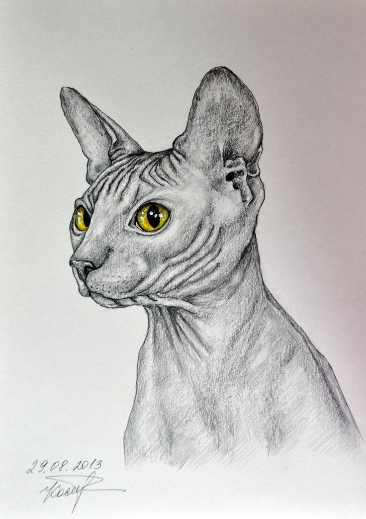 Картинки для срисовки сфинкс