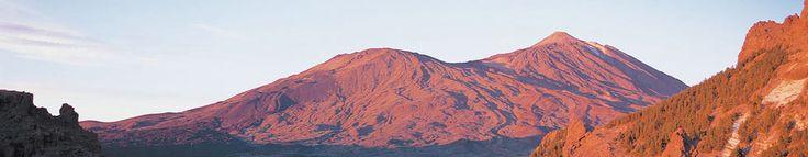 Cabildo de Tenerife: El Cabildo apoya el mayor evento solidario del Sur de la Isla