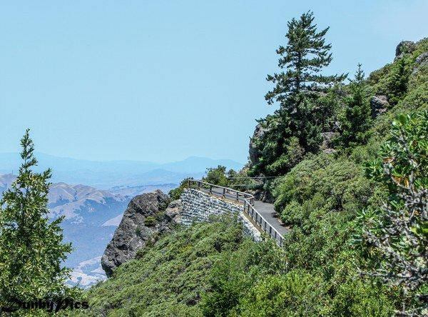 Just Chill: 5 Short Hikes and Nature Spots to Kick Back in Marin