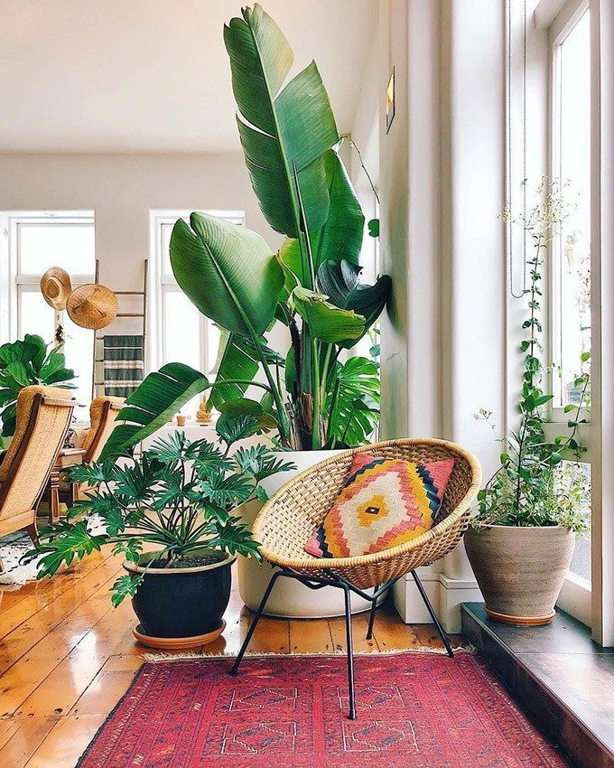 11 tips to achieve the Bohemian style in your home