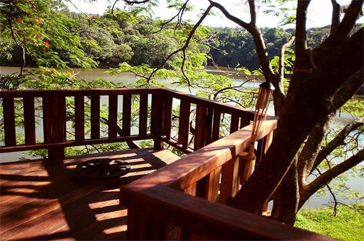 Projetos Adulto - Mirantes - Casa na Árvore: