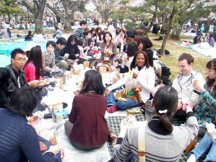 hanami Students | Japanese Language Course in March | ASAHI NIHONGO