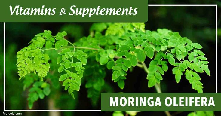 Learn more about Moringa oleifera, its benefits, uses and side effects before you consider taking this supplement. https://articles.mercola.com/vitamins-supplements/moringa-oleifera.aspx?utm_source=facebook.com&utm_medium=referral&utm_content=facebookmercola_vitamins-supplements&utm_campaign=20180210_moringa-oleifera