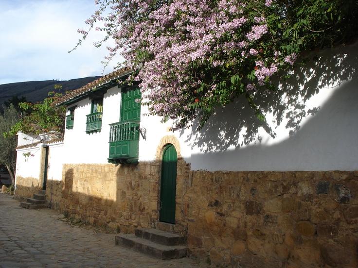 Villa de Leyva... una veranera lila <3