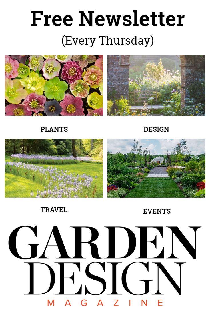Free Weekly Newsletter From Garden Design Magazine Here S What Our Newsletter Covers Garden Design Drought Tolerant Landscape Garden Design Magazine