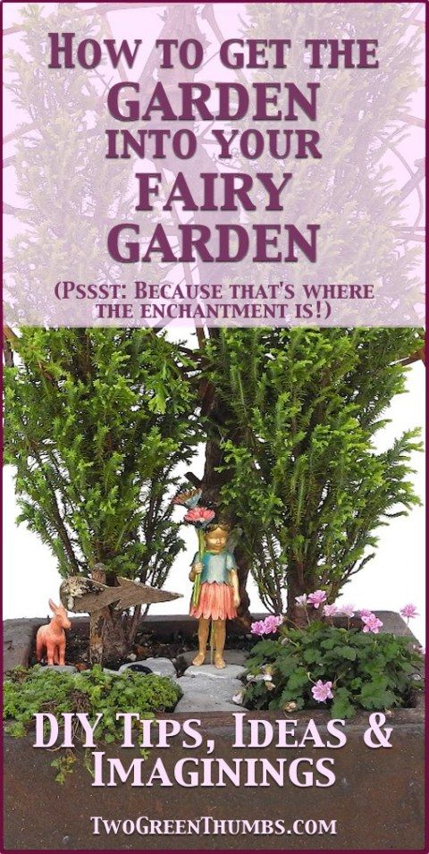 Put The Garden Into Your Fairy Garden And Create Enchantment At The Same  Time.