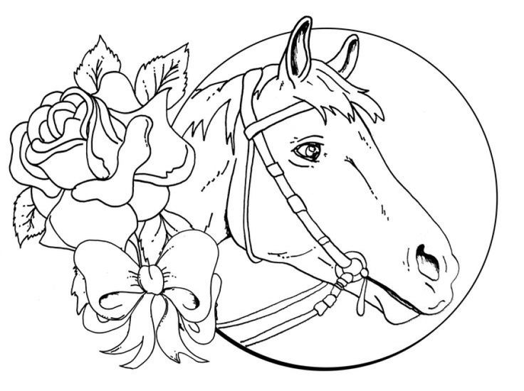 challenging horse coloring pages for grown ups