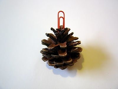 pinecone name card holders cute for