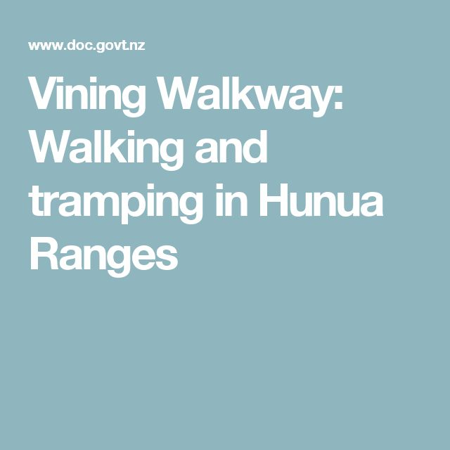 Vining Walkway: Walking and tramping in Hunua Ranges