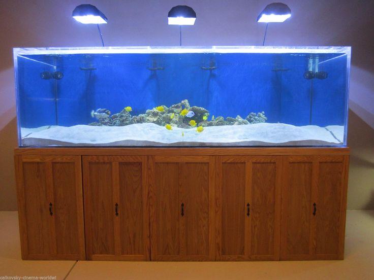 Best 25 100 gallon aquarium ideas on pinterest 1 gallon for 100 gallon fish tank for sale