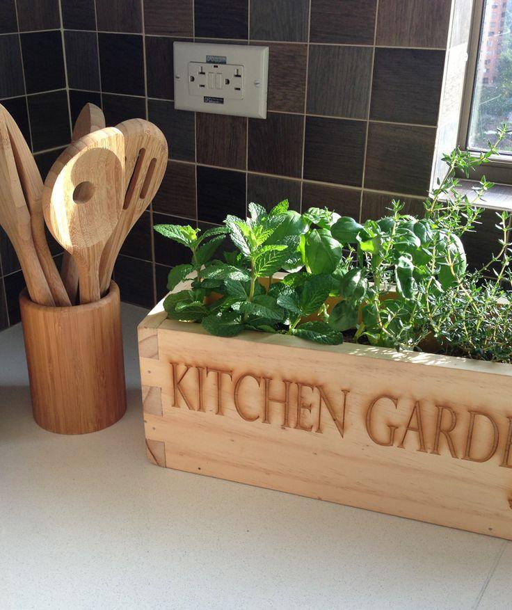 Kitchen Garden - Huerta de madera, elige la combianción de hierbas que más te guste, $79.900 COP. Encuentras más accesorios para el hogar en www.giferent.com/regalos-apartashower