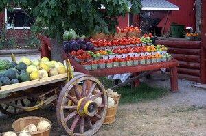 Farmer's Markets are plentiful in the county