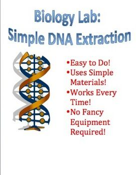 Free Biology Lab: Simple DNA (deoxyribonucleic acid) Extraction.  This is one of my favorite labs/activities that I do with my Biology I students. It doesn't take long to do, it uses very simple, household materials, and it works every time! There is no number crunching or data analysis, but just a fun activity that your students will really enjoy.