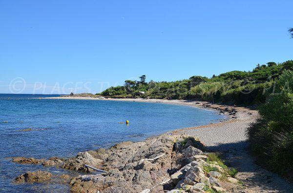 Moutte Beach in Saint-Tropez - Var - France - Plages.tv