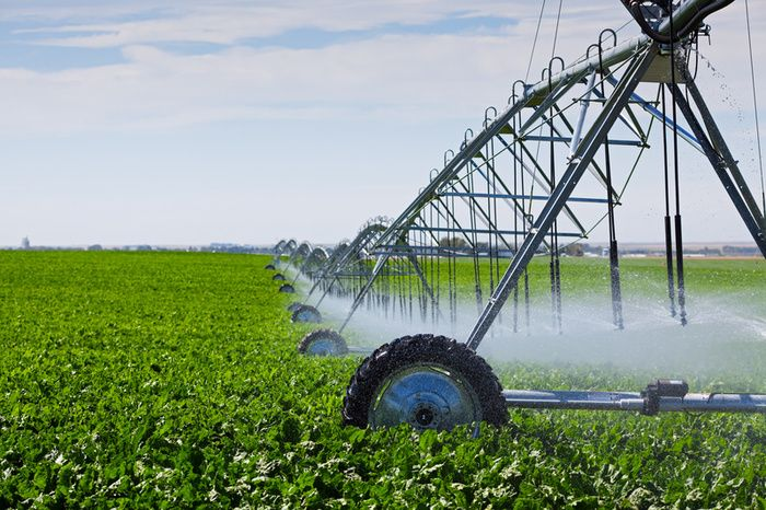 Irrigation | Waterway protection Withdrawals and irrigation