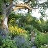 Blomsterprakt. Slingrande gångar, stora träd och pelargoner. Hortensior, vallmo, lysing och dagliljo...