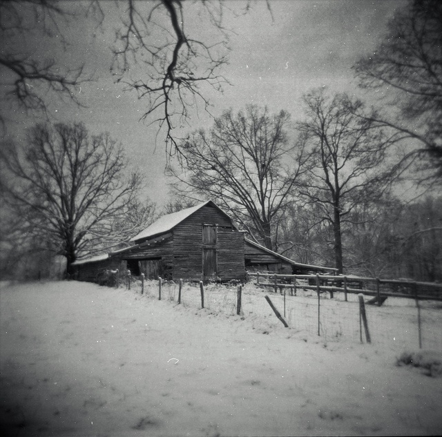 photo by Evan Leavitt