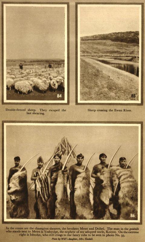 Imagen 7. Cazadores convertidos en ovejeros.