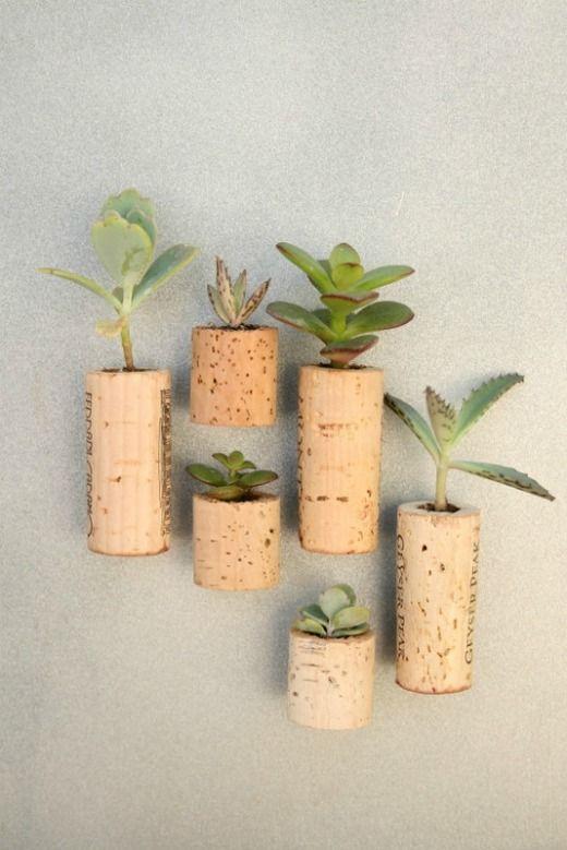 cork magnets