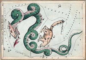 Draco (constellation) - Wikipedia, the free encyclopedia