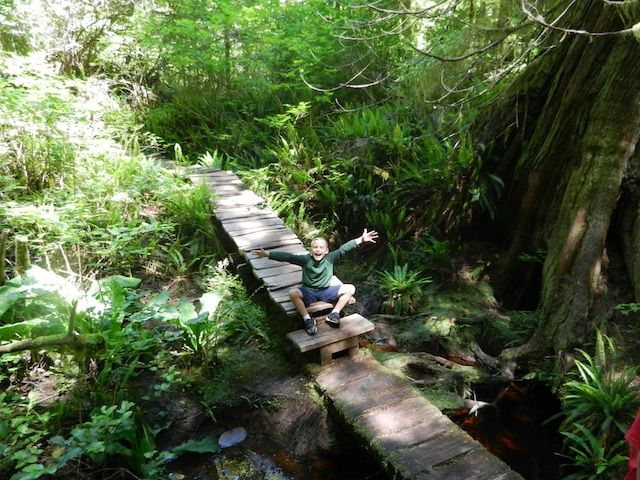 Meares Island: a hike for families in Tofino, BC but there is stunning hikes all along the Coast.