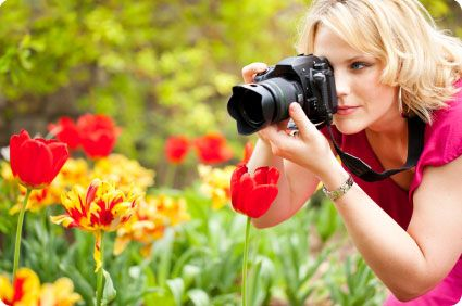 short article on how to make money online with your pictures