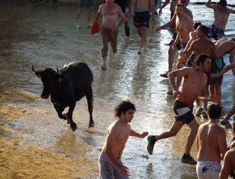 """Våre venner inviterte oss til byen, de forklarte at det var fiesta og at oksen skulle jages på vannet. """"Bisart"""" nikket vi til hverandre, men landet skal jo oppleves og, som sagt, veien blir jo til mens man går. http://www.spania24.no/mitt-mote-med-el-toro/"""