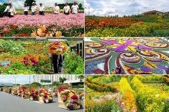 Feria de las Flores♥♥