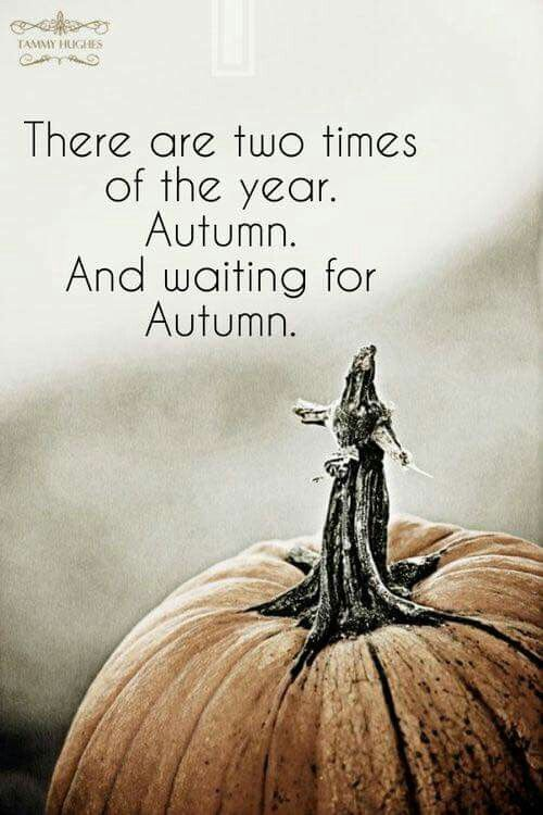 AUTUMN, because fall is what the leaves do. Fall is NOT a season.