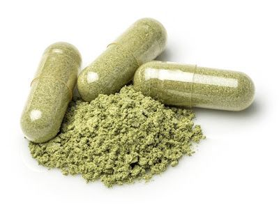 Some people World Health Organization don't just like the style of the kratom powder can combine the powder with milk, fruit juice, or kefir to add taste in keeping with their preferences.