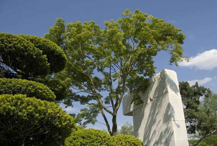 enzo enea / tree museum rapperswil-jona