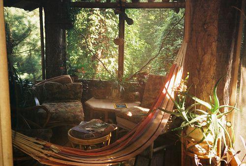 dustScreens Porches, Dreams, Indoor Hammocks, Sun Porches, Reading Nooks, Trees House, Boho, Places, Sun Room