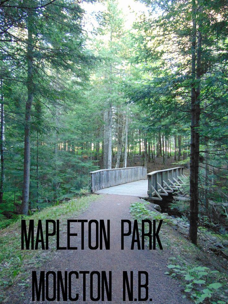 Mapleton Park Moncton NB