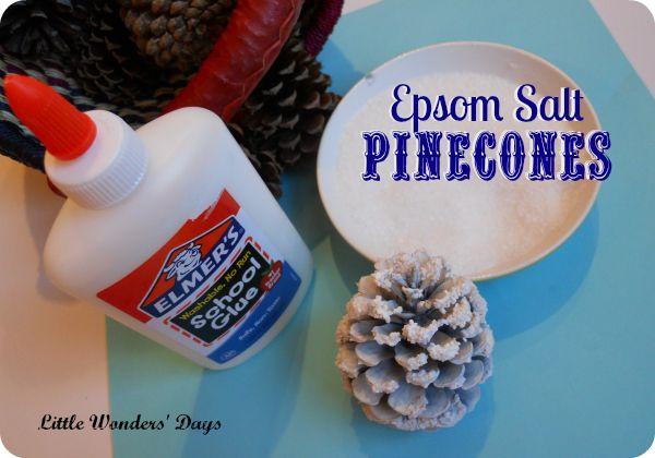 Epsom Salt Snowy Pinecones via Little Wonders' Days