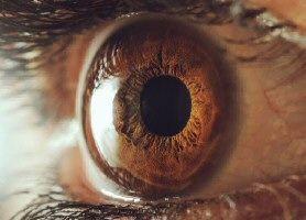 Denně  si  všichni  znás ničíme  oči  nekonečným koukáním  do počítačů…