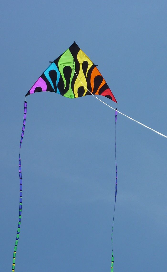 The typical colors of a retail kid's Delta kite. The curved lines make for a more interesting pattern though.... T.P. (my-best-kite.com) Cropped from a photo by Mike Carroll on Flkr.