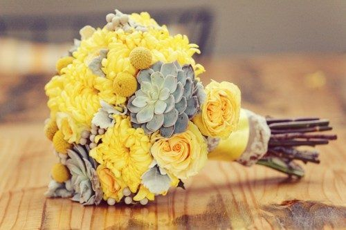Silvery succulents adorn the yellow cluster of blooms in this bouquet.  Yellow flowers: roses, football mums and craspedia.