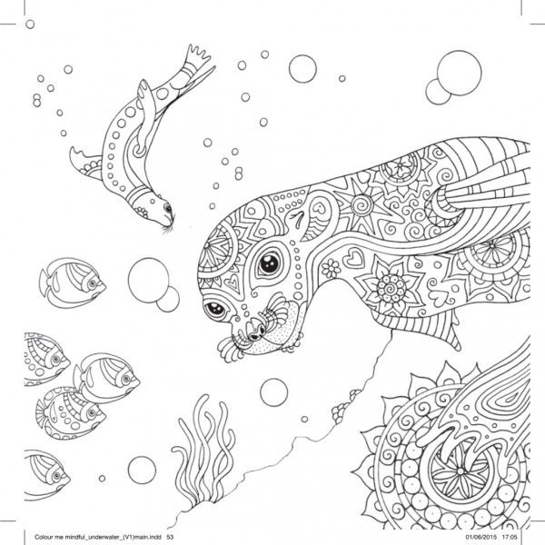 Restore peace and calm to your soul with some therapeutic colouring based on underwater scenes open your eyes and imagine the ocean lapping away in front