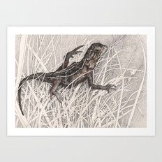 Australian Wildlife Art | Gundaroo | Shelley Richardson   'Dragon Refuge' Earless Dragon in grasses 'Peoples Choice Award' ACT Region Catchment Group Art Prize - Native Grasslands Pen and ink illustration, 2014 ©Shelley Richardson