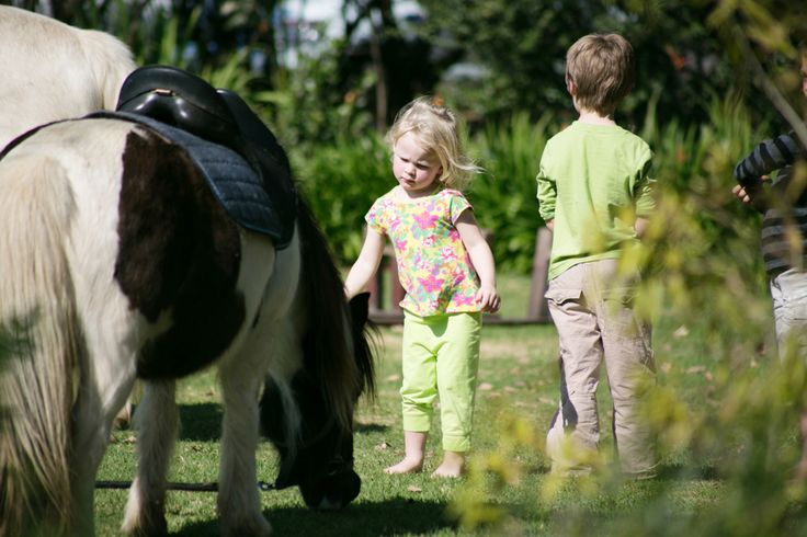 Pony rides @Rhebokskloof every weekend
